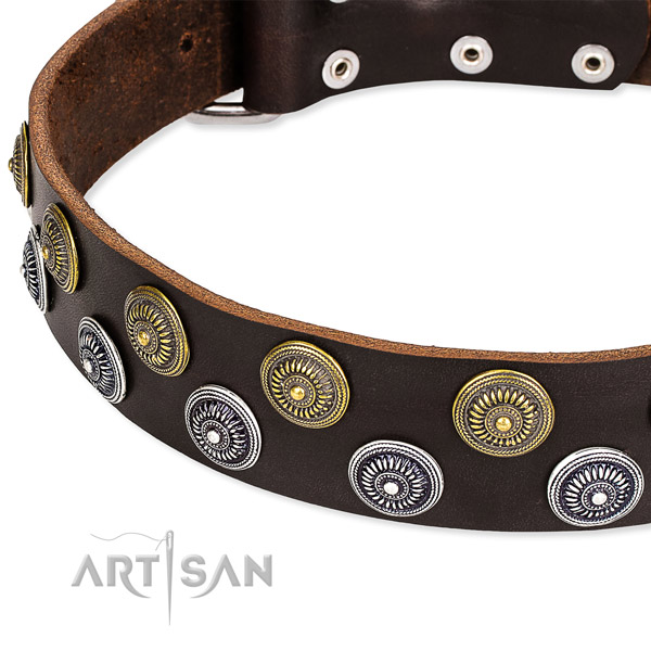 Genuine leather dog collar with amazing decorations
