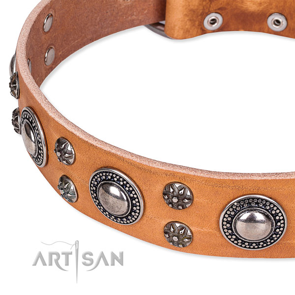 Walking full grain genuine leather collar with reliable buckle and D-ring