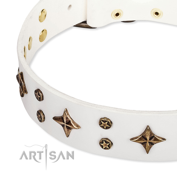 Full grain natural leather dog collar with incredible adornments