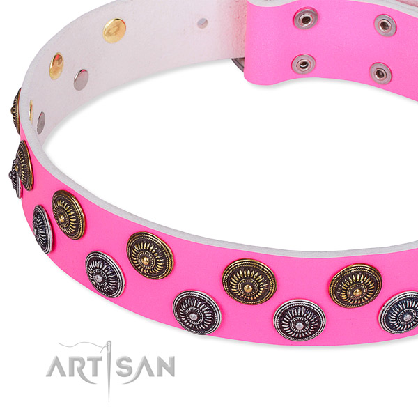 Full grain leather dog collar with trendy adornments