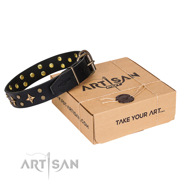 Decorated full grain genuine leather dog collar for everyday use