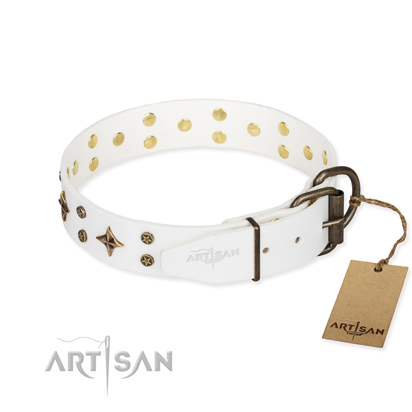 Everyday use leather collar with adornments for your canine