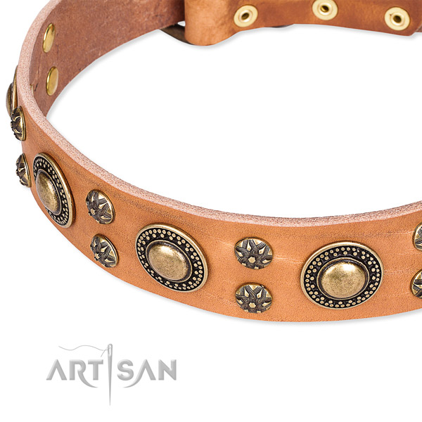 Leather dog collar with remarkable decorations