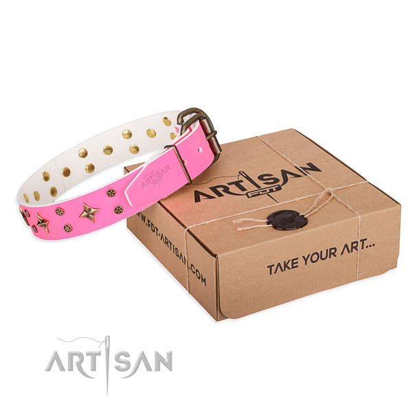 Studded full grain leather dog collar for everyday use