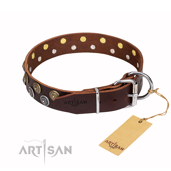 Top notch full grain natural leather dog collar for stylish walking