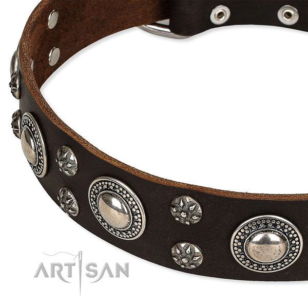 Easy to use leather dog collar with extra sturdy non-rusting buckle and D-ring