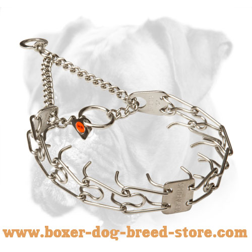 Strong Boxer Pinch Collar of Stainless Steel