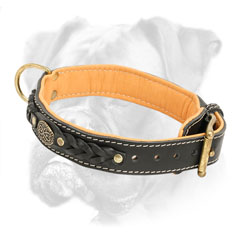 Wide leather Boxer collar decorated with luxury brass medallion