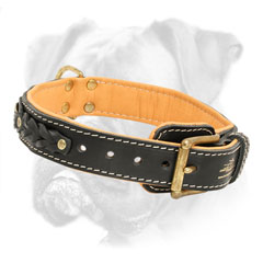 Securely stitched and riveted leather Boxer collar