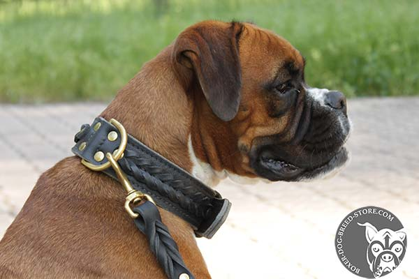 Dependable leather Boxer collar with brass D-ring