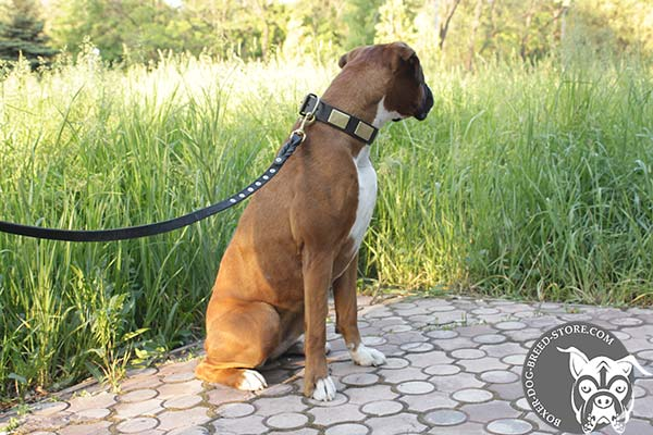 Easy adjustable collar for Boxer