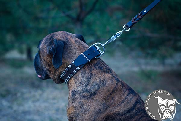 Boxer collar with nickel plated fittings