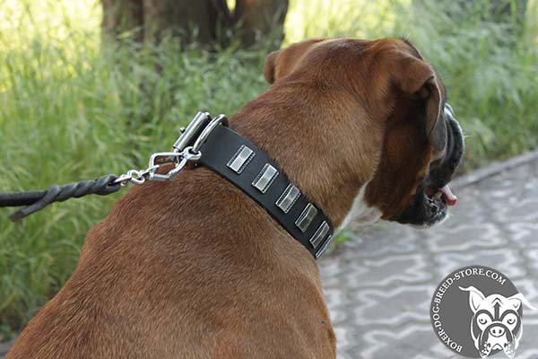Boxer collar with nickel plated plates