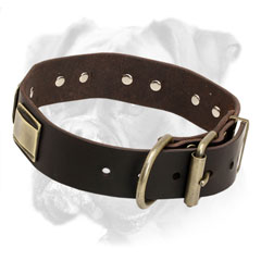 Super strong brass fittings for Boxer leather collar