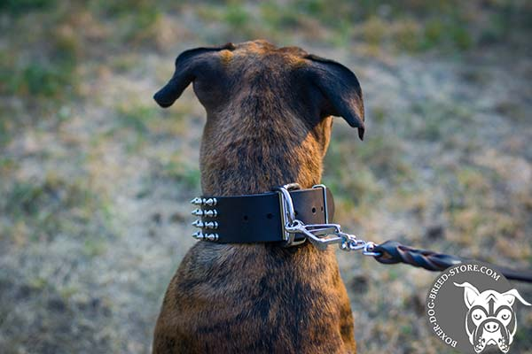Spiked wide leather Boxer collar