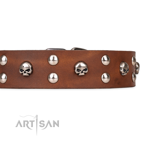Full grain leather dog collar with smoothed surface