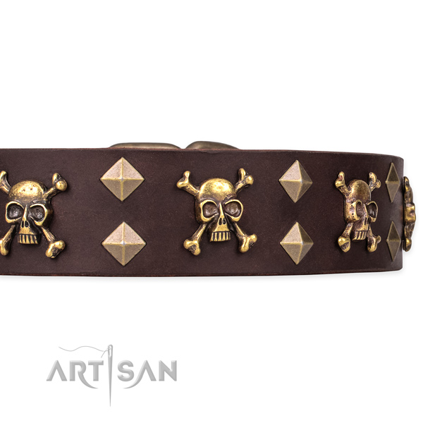 Best quality leather dog collar for easy walking