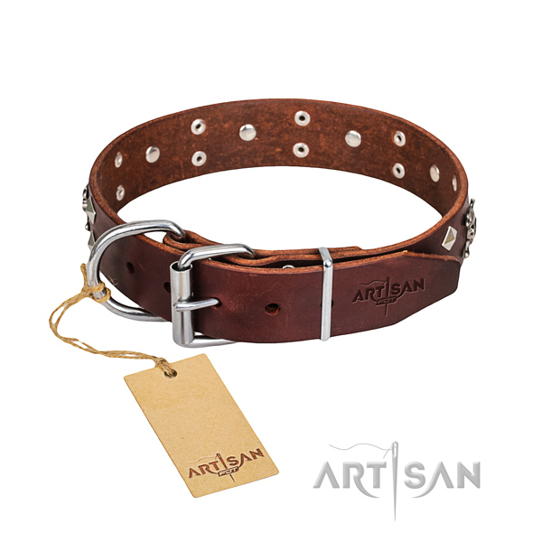 Sturdy leather dog collar with sturdy fittings