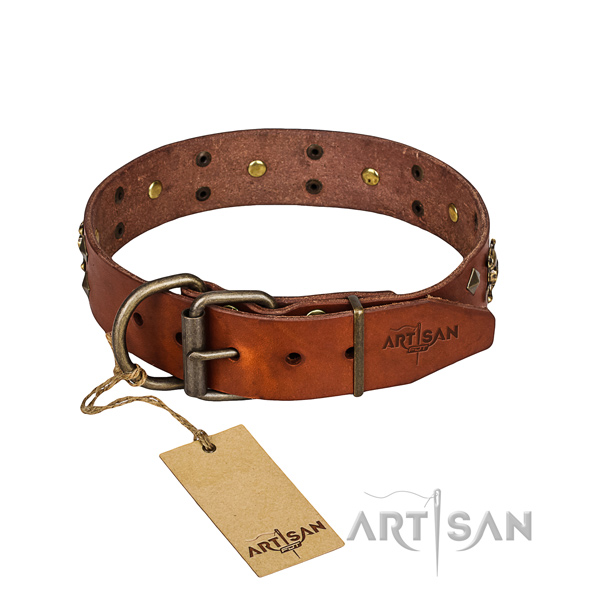 Leather dog collar with polished edges for comfy strolling