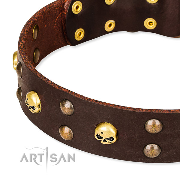 Leather dog collar with rounded edges for convenient daily wearing