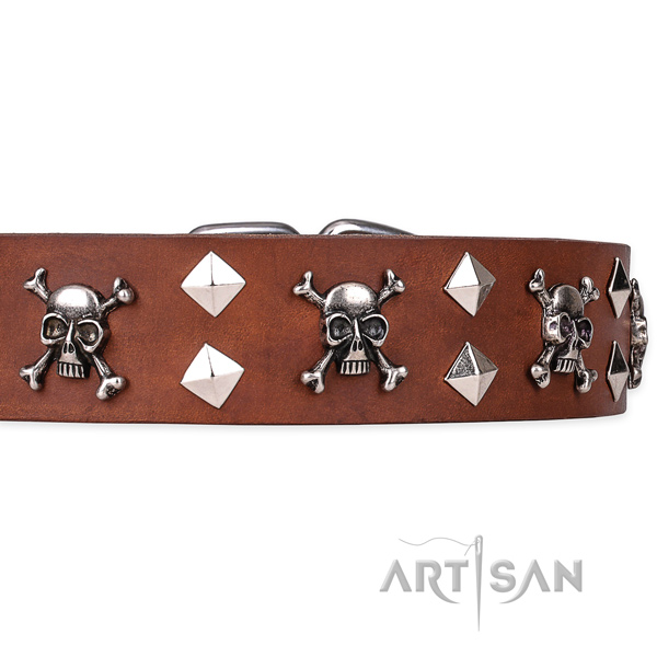 Casual leather dog collar with refined decorations