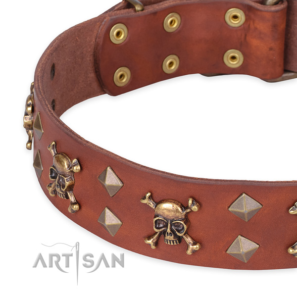 Daily leather dog collar with exciting decorations