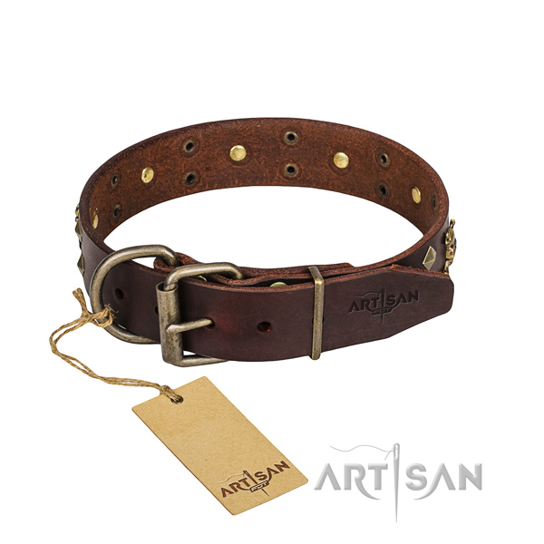 Hardwearing leather dog collar with non-rusting elements