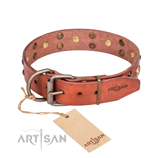 Daily leather dog collar for reliable use