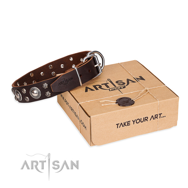 Casual style leather dog collar with stunning adornments