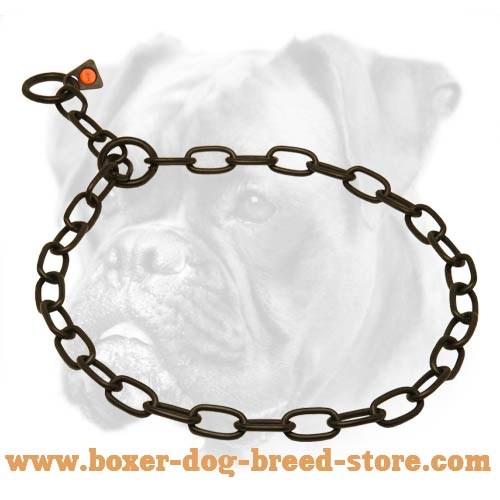 Reliable Boxer Collar of Stainless Steel