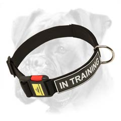 Nylon collar with ID patches