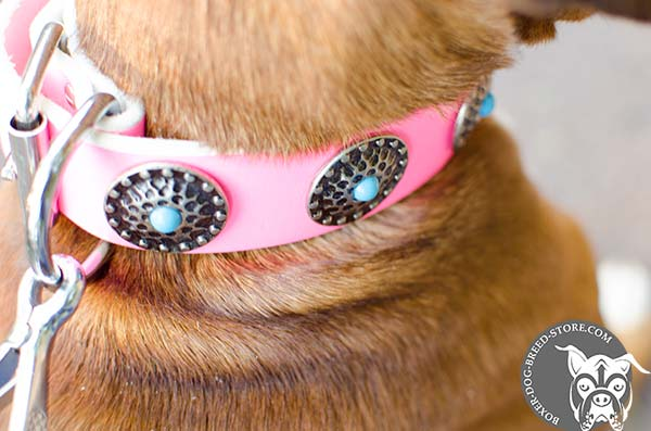 Girlish pink Boxer collar with conchos and blue stones