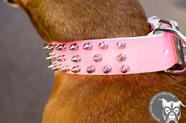 Bright pink Boxer collar with three rows of spikes