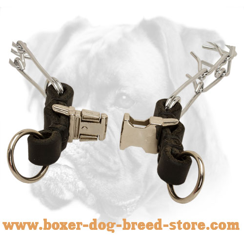 Steel Boxer Pinch Collar of Chrome Plated Material