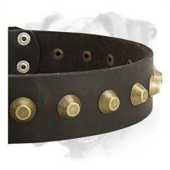 Super durable leather collar