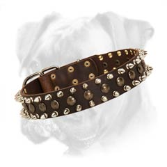Brass and nickel plated fitting decorate this collar perfectly!