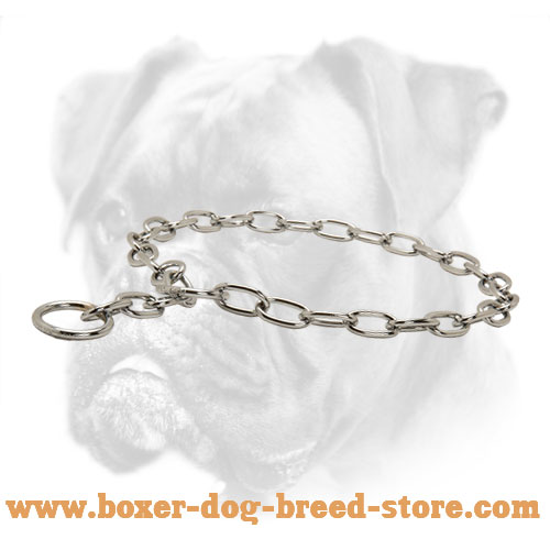 Stainless Boxer Collar of Steel