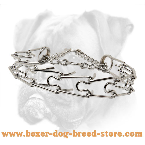 Pinch Boxer Collar of Chrome Plated Metal