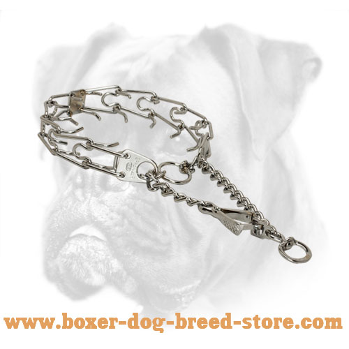 Lasting Boxer Pinch Collar with Reliable Snap Hook