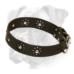Riveted Leather Boxer Collar with Nickel Fitting