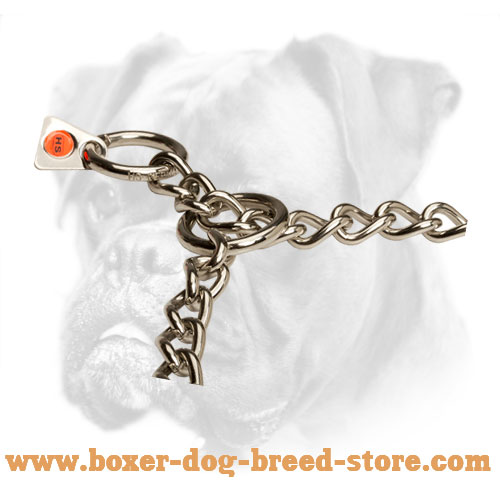 Stainless Boxer Choke Collar of Steel