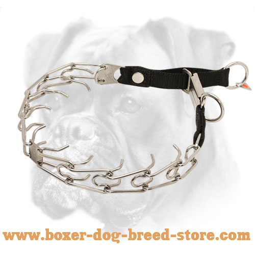 Amazing Boxer Pinch Collar for Efficient Training