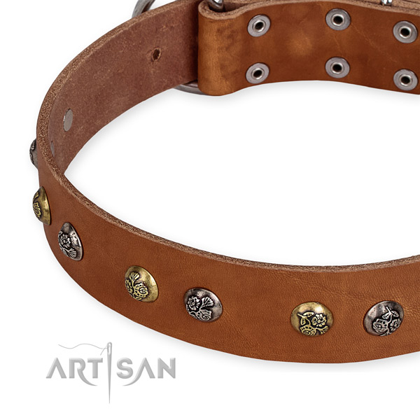 Genuine leather dog collar with amazing rust resistant decorations