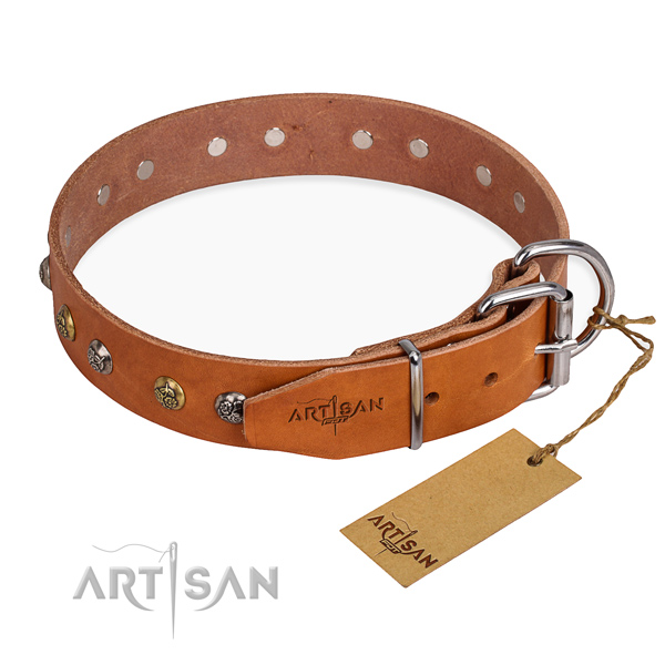 Leather dog collar with incredible durable decorations