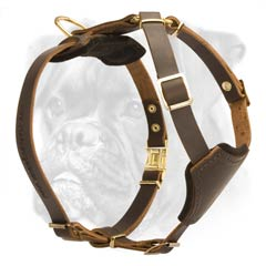 Deluxe leather classic harness for Boxer puppy
