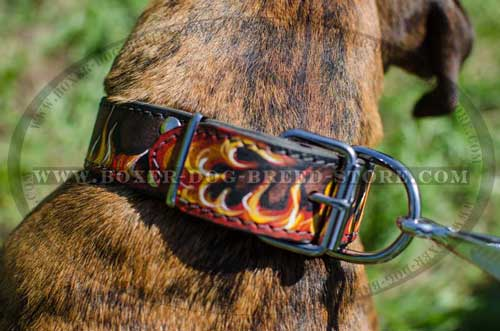We offer you the highest quality collar