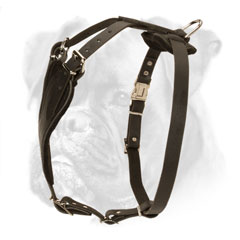Best leather harness for agitation training