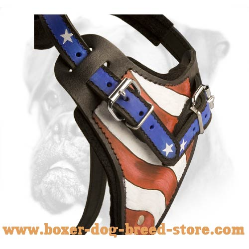 Hand painted harness for Boxer breed