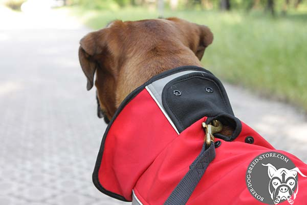 Nylon Boxer coat with hole for leash attachment