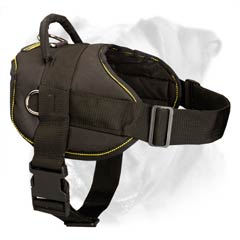Excellent fit due to adjustable front strap